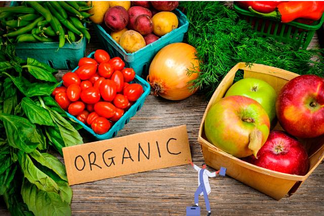 ý tưởng kinh doanh thực phẩm sạch